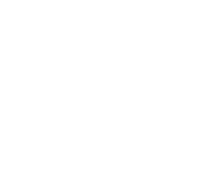 Logo 289 Consulting